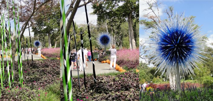 Dallas Star and spiral spears at Dale Chihuly Show at Dallas Arboretum