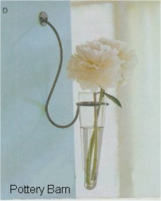 Simple wall vase, from Pottery Barn catalog
